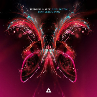 Tritonal & APEK feat. Meron Ryan – Just Like You